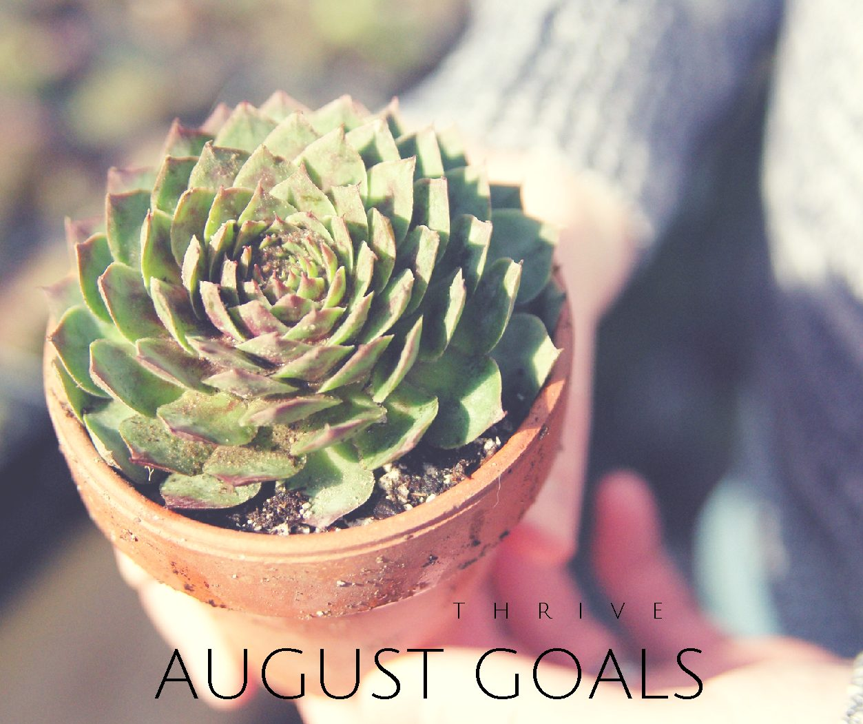 Thrive | August Goals